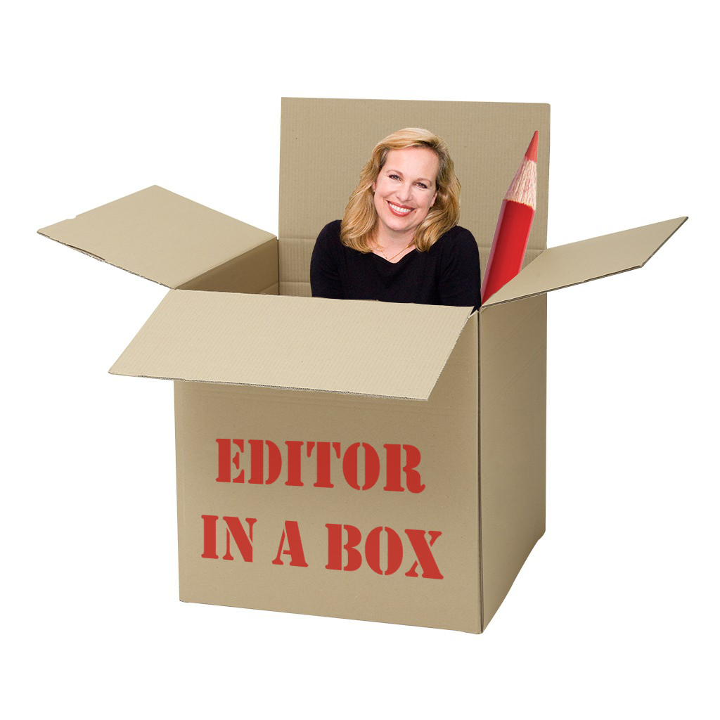 "Announcing ""Editor in a Box""!"